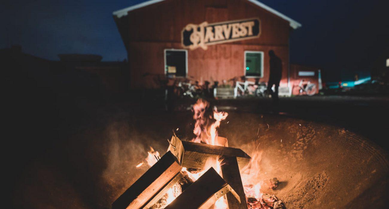 Harvest foto af Kristoffer Juel Poulsen